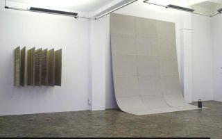 秘鲁参展艺术家眼中的2015年威尼斯双年展
