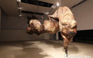 第九届AAC艺术中国提名奖名单揭晓