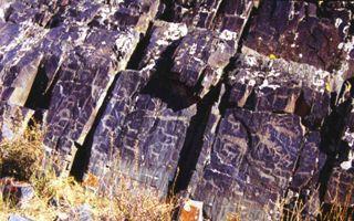 新疆阿勒泰市发现麋鹿及狩猎岩画