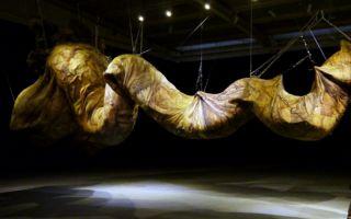 第九届AAC艺术中国年度艺术家提名奖:寻找可能性的姜杰