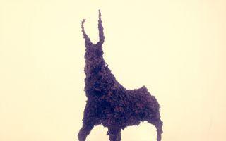 《五月羊》艺术展:中法艺术的碰撞