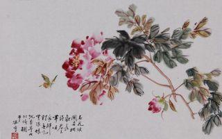 书画收藏与鉴赏:《花蝶图》