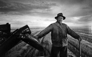 约瑟夫·卡什摄影作品展 看大师如何捕捉人物个性的精髓