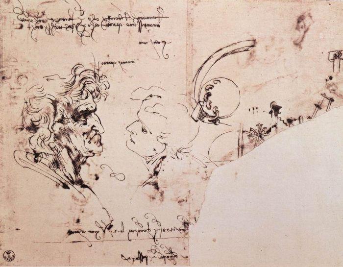 达芬奇素描草图2