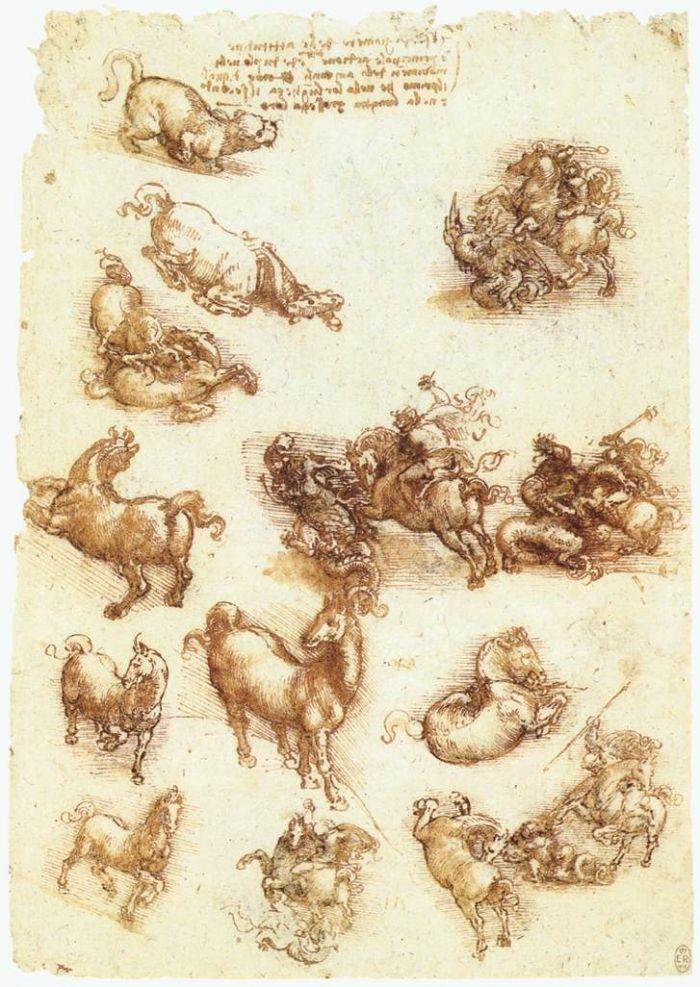 马匹草图 达芬奇2