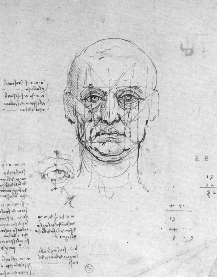 头部和眼睛比例的研究 达芬奇