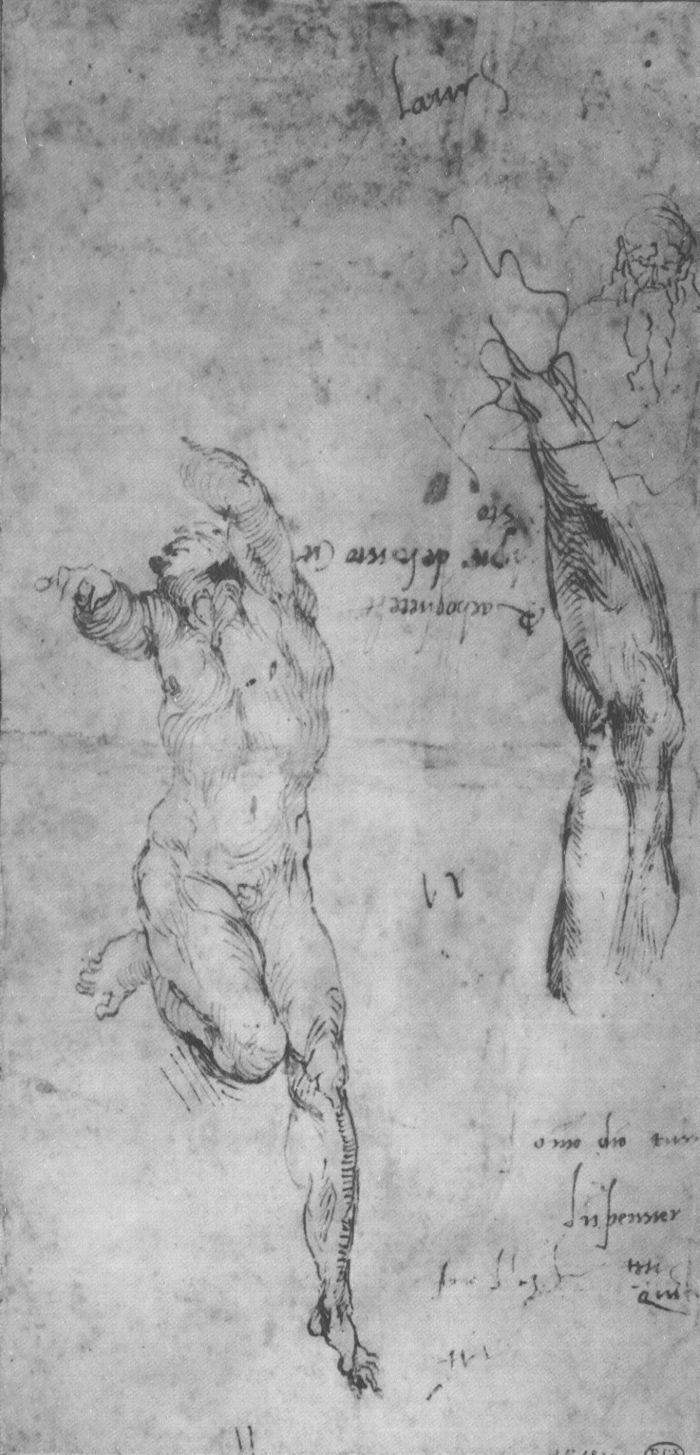 裸体男子和大胡子男子的手臂 米开朗基罗