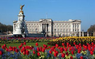 白金汉宫1.5亿英镑翻修 英女王或搬出
