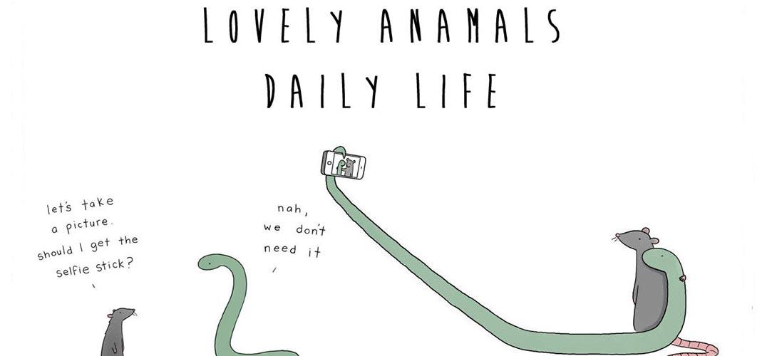 小动物聊天图片