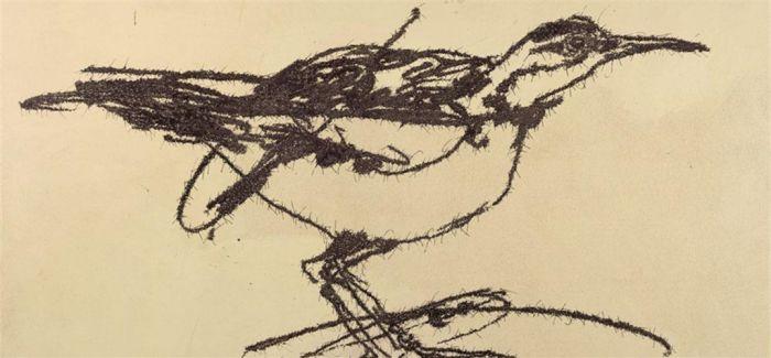 """书画  面对不少观众对作品""""傻鸟""""的质疑,当代艺术家叶永青认为不存在图片"""