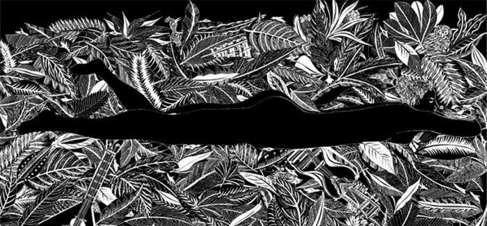黑白艺术:冷冰川简介
