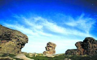 新疆喀纳斯发现亿年古地中海海底遗址