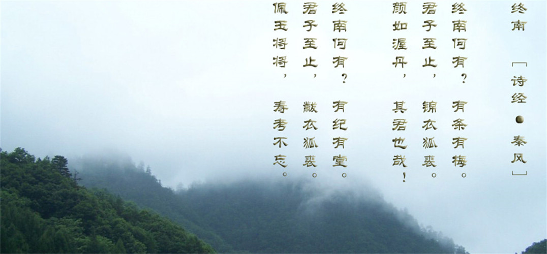 """著名学者费孝通称中华民族是""""多元一体"""",而中华民族的""""多元一体""""就是"""