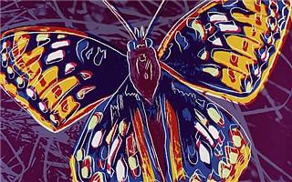 摄影与绘画之安迪·沃霍尔:电椅、木槿以及濒危动物