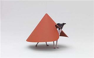 """原研哉""""设计——为了爱犬""""展览开幕"""