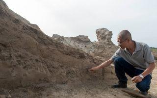 最新考古发现新疆通古斯巴什城或始建于西晋