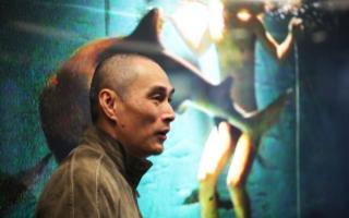 """""""保护鲨鱼""""艺术巡回展参展艺术家:翁奋"""