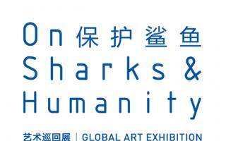 """""""保护鲨鱼""""艺术巡回展展览简介"""