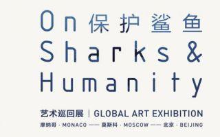 """""""保护鲨鱼""""的艺术对话走进中国国家博物馆"""