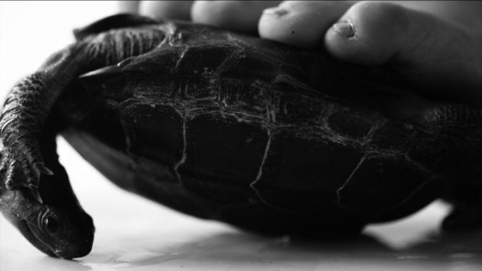 徐渠,《习惯II》,高清黑白录像,3′13″,2014