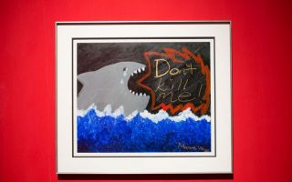 """欧洲王室都点赞 """"保护鲨鱼""""艺术展开幕"""