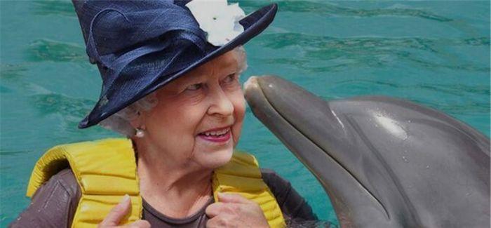 佛洛伊德 :让英国女王亲访 72 次的传奇艺术家