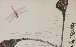 草间偷活:爱画虫子的齐白石 心里住了个小男孩