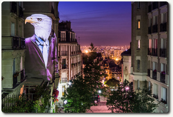 影像与建筑的结合:城市里的动物时装秀