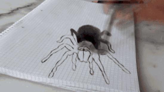 爸爸画超逼真的3d蜘蛛想吓女儿,结果小萌娃表现十分 凶残