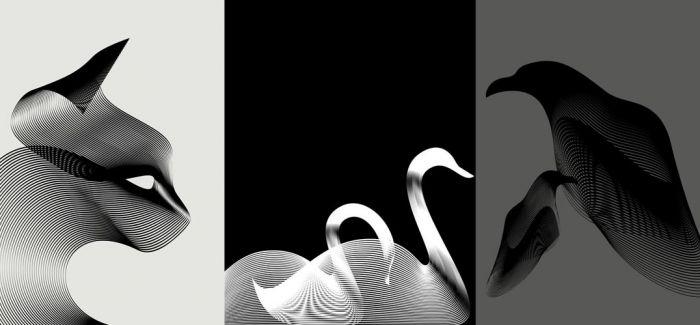 精简而传神 莫列波纹勾勒出动物的形与象