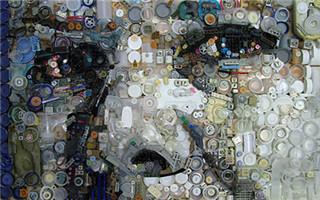 Zac Freeman的塑料垃圾肖像作品