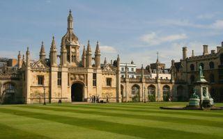 剑桥学生要求将学校青铜公鸡雕塑归还尼日利亚