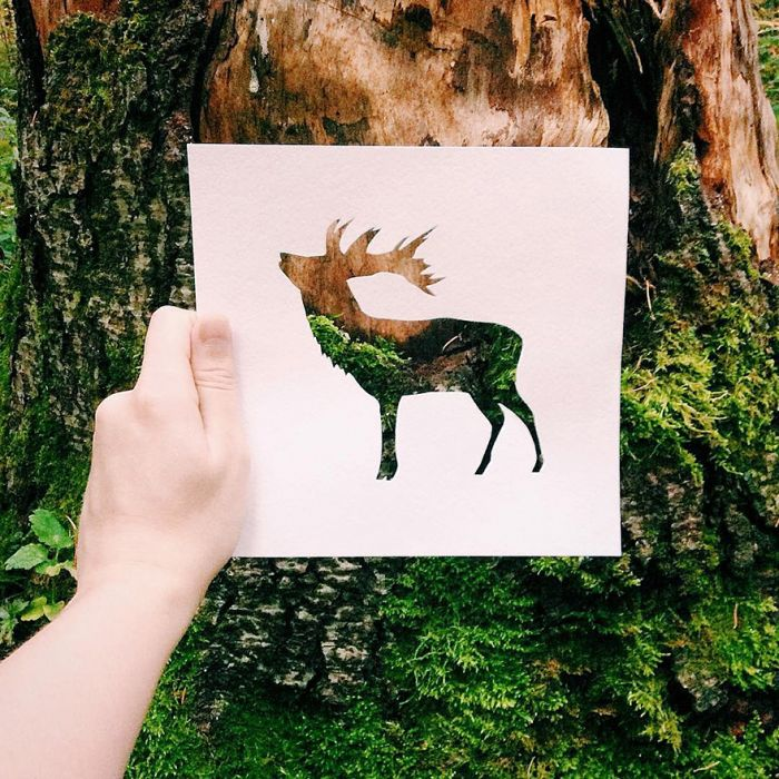 animals-silhouettes-natural-landscapes-nikolai-tolstyh-24