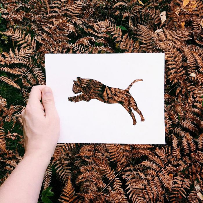 animals-silhouettes-natural-landscapes-nikolai-tolstyh-20