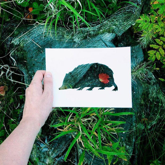 animals-silhouettes-natural-landscapes-nikolai-tolstyh-27