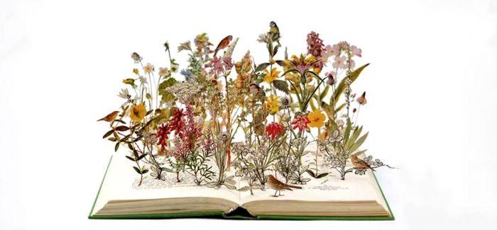 植物动物纸浮雕作品图片