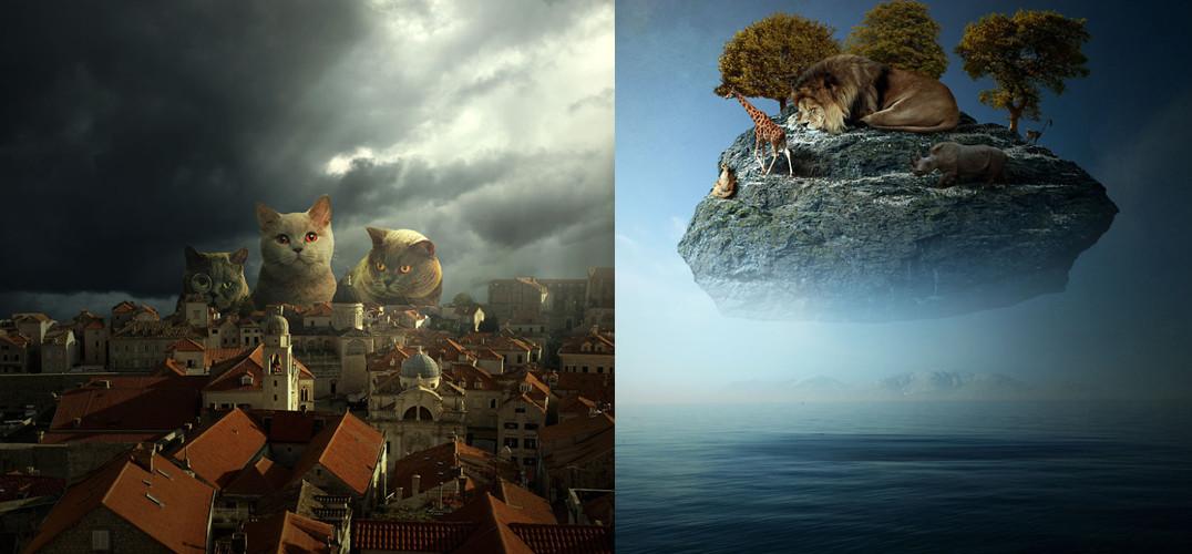 动物占领地球的创意影像