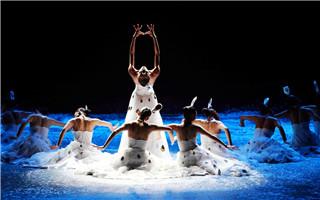 全国艺术类院校学生 将学云南15个少数民族舞蹈音乐