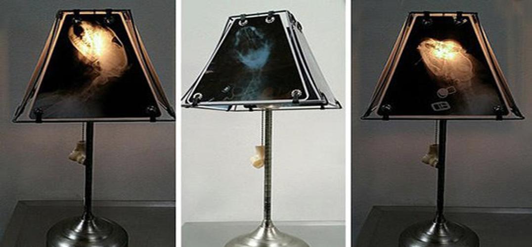废弃动物骨骼x光片打造另类透光灯罩