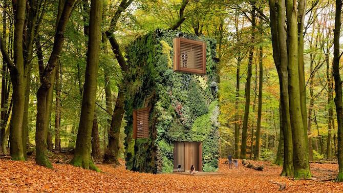 壁纸 风景 森林 桌面 670_377