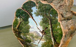 艺术家艾莉森·莫瑞斯格在木桩断面上还原树的前世
