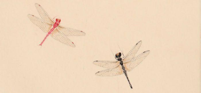 齐白石花鸟画的真情妙趣:虫入藤溪是雅君