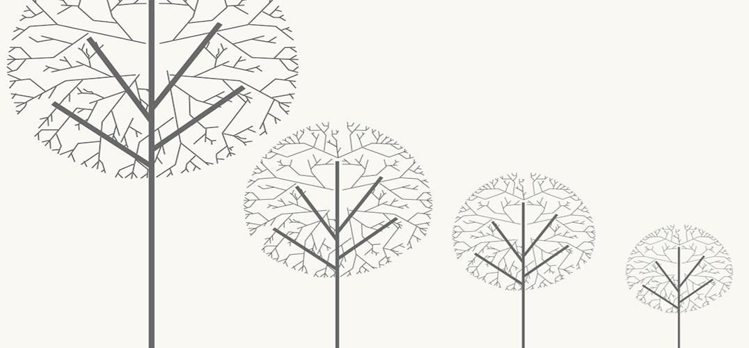 树木的生长过程手绘