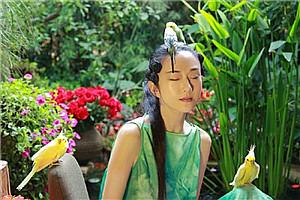 你羡慕吗?杨丽萍的私家花园 看一眼就醉!