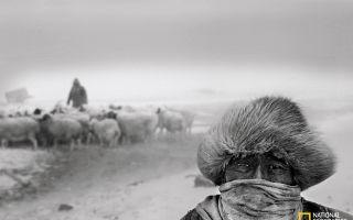 归去来兮|影像记录中国最后的游牧天堂
