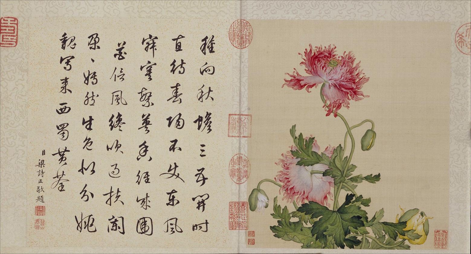 郎世宁《花鸟图册》北京故宫博物院藏3