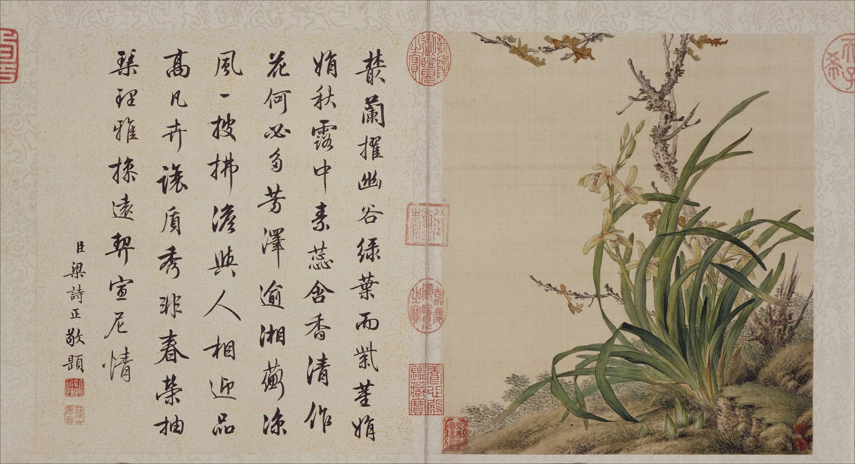 郎世宁《花鸟图册》北京故宫博物院藏