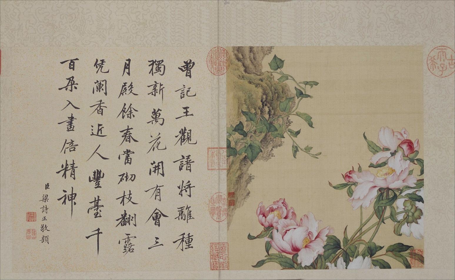 郎世宁《花鸟图册》北京故宫博物院藏5