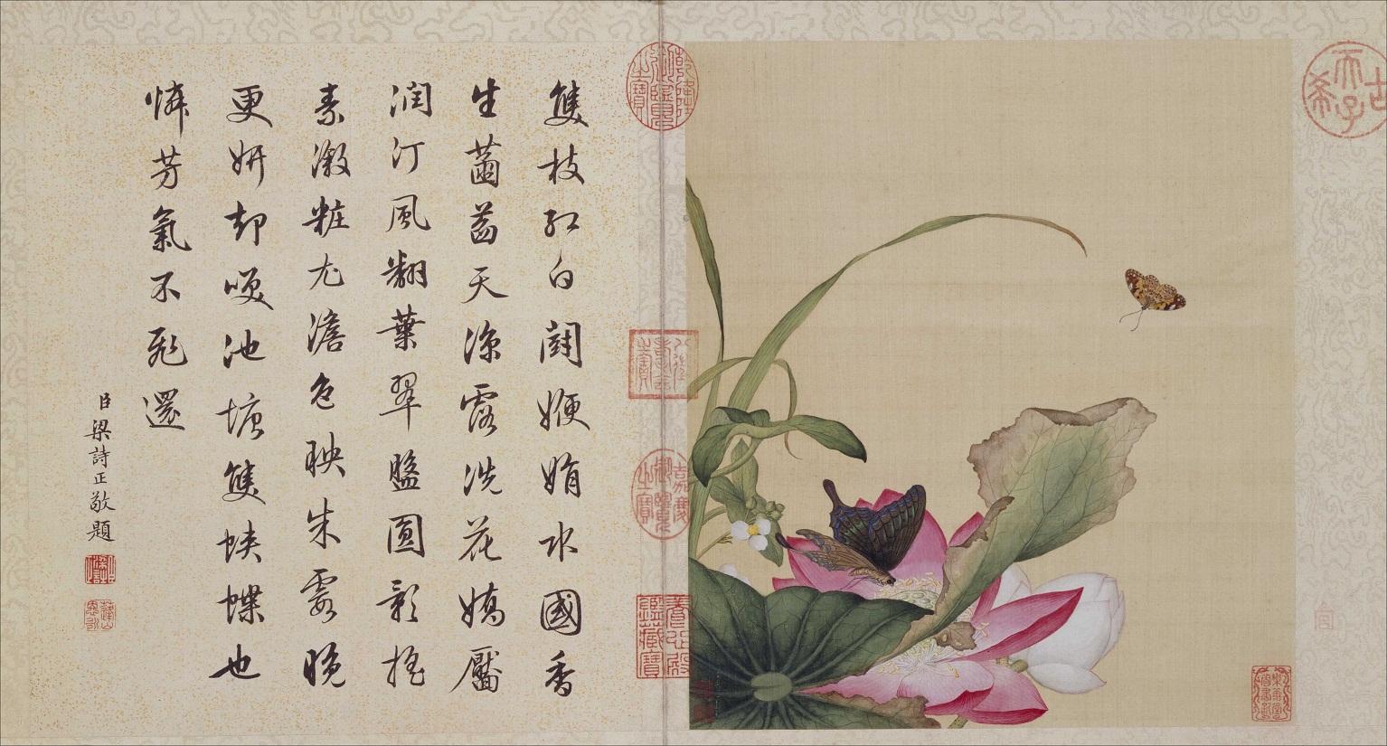郎世宁《花鸟图册》北京故宫博物院藏7