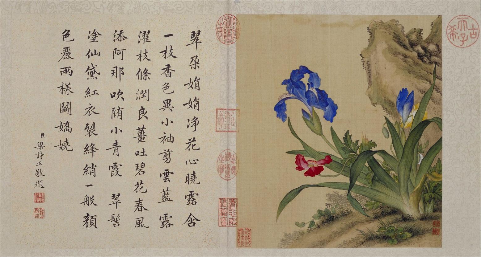 郎世宁《花鸟图册》北京故宫博物院藏4